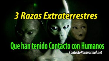3 Razas Alienígenas que ya habrían conquistado a la Humanidad